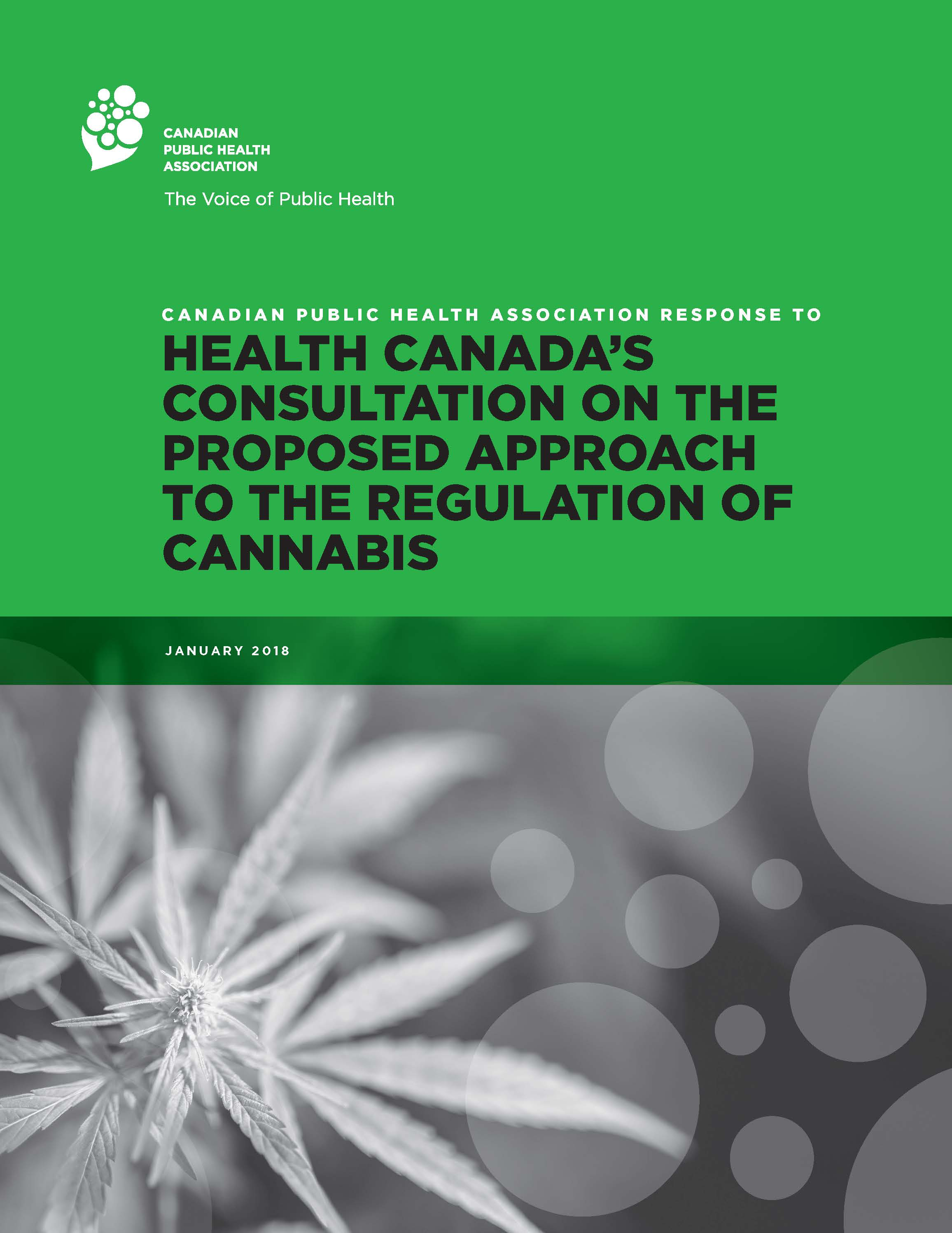 Cover: Response to Health Canada's Consultation on the Proposed Approach to the Regulation of Cannabis